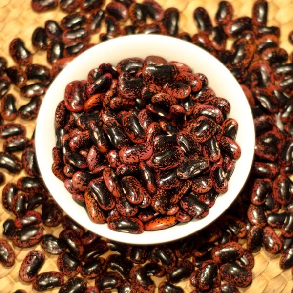 Semences de haricot grimpant d'espagne (Phaseolus coccinus ) | Jardin des vie-la-joie | Artisan semencier