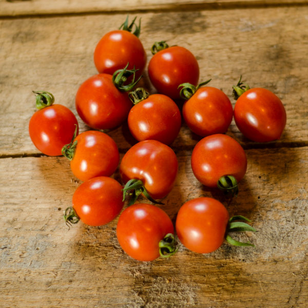 Tomate Principe Borghese (Lycopersicon esculentum) | Jardin des vie-la-joie | Artisan semencier