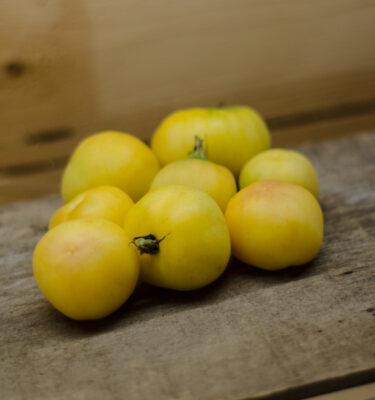 Tomate Pêche jaune (Lycopersicon esculentum)   Jardin des vie-la-joie   Artisan semencier