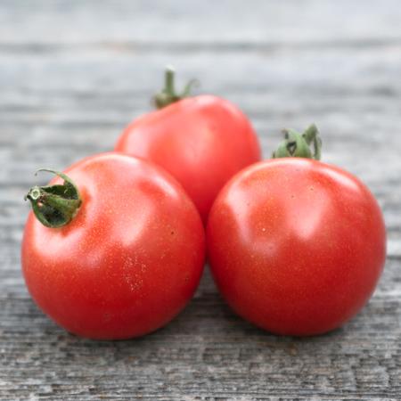 Tomate Bleuette (Lycopersicon esculentum) | Jardin des vie-la-joie