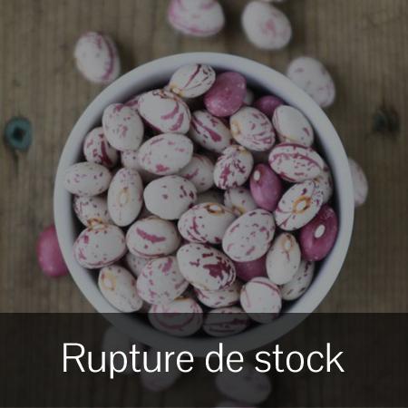 Haricot Mohawk Early (Phaseolus vulgaris) | Jardin des vie-la-joie | Artisan semencier