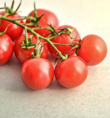 Tomate 'Mon Plaisir' (Lycopersicon esculentum) | Jardin des vie-la-joie | Artisan semencier