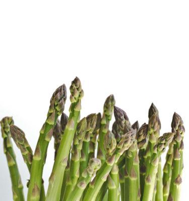 Asperge (Asparagus officinalis) | Jardin des vie-la-joie | Artisan semencier