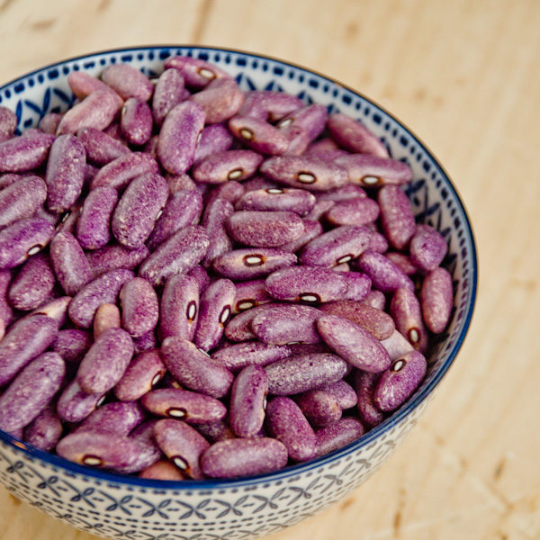 Haricot nain Mrocumiere (Phaseolus vulgaris) | Jardin des vie-la-joie | Artisan semencier