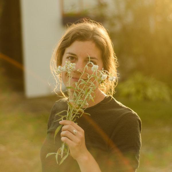 Immortelle blanche (Anaphalis margaritaceae) | Jardin des vie-la-joie | Artisan semencier