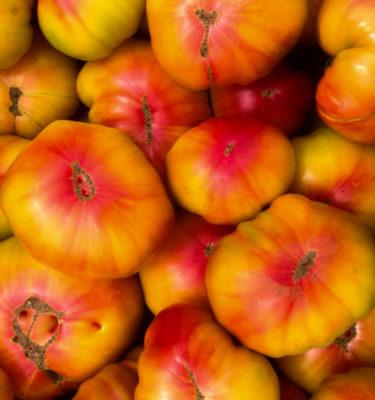 Tomate Striped german (Lycopersicon esculentum) | Le jardin des vie-la-joie| Artisan semencier du Québec