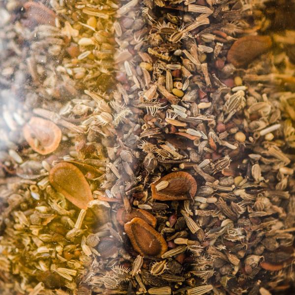 Mélange de graines de fleurs sauvages | Le jardin des vie-la-joie | Artisan semencier