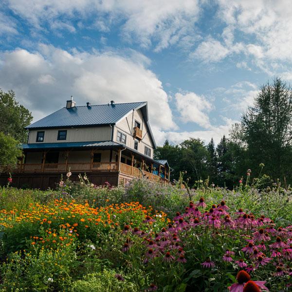 Herbothèque - Institut de formation en herboristerie - École et jardins