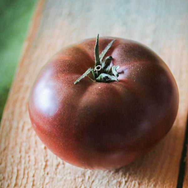 Semences de tomate Noir de Crimée (Lycopersicon esculentum) | Jardin des vie-la-joie | Artisan semencier