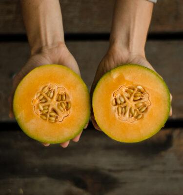 Semences de cantaloup 'Minnesota midget' (Cucumis melo) | Jardin des vie-la-joie | Artisan semencier
