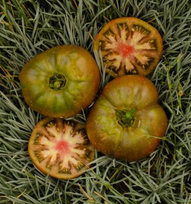 Tomate Noire de Crimée (Lycopersicon esculentum)   Jardin des vie-la-joie   Artisan semencier