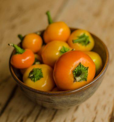 Piment Carrot Bomb (Capsicum baccatum) | Jardin des vie-la-joie | Artisan semencier