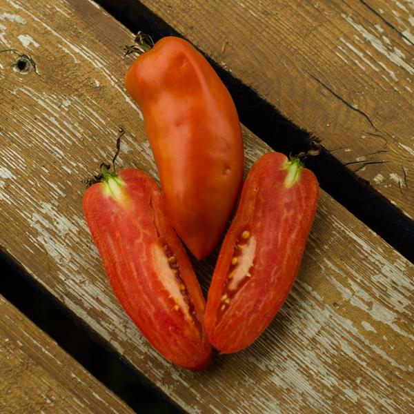 Semences de tomate Cornue des Andes (Lycopersicon esculentum) | Le jardin des vie-la-joie| Artisan semencier du Québec