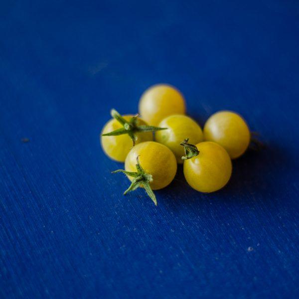Semences de tomate coyote / mini blanche (Lycopersicon esculentum)   Jardin des vie-la-joie   Artisan semencier