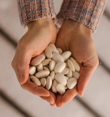 Semences de haricot grimpant gros blancs soissons (Phaseolus coccinus ) | Jardin des vie-la-joie | Artisan semencier
