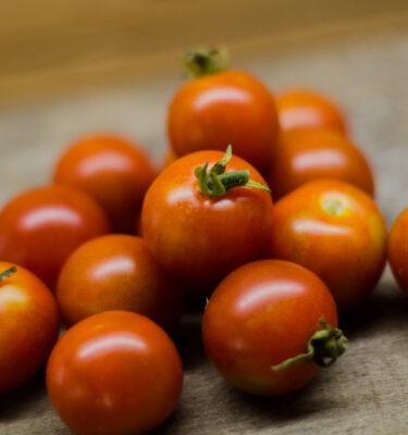 Semences de tomate Sugar lump (Lycopersicon esculentum) | Jardin des vie-la-joie | Artisan semencier